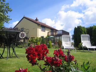 Ty Castell Guest House - Home of the Kingfisher - Carmarthen vacation rentals