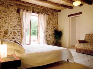 The Guardian's Cottage - Busserolles vacation rentals