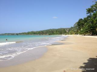 Fern Villa - walk to beach in 2 minutes / WIFi - Boscobel vacation rentals