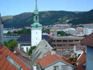 View - Top floor apartment  w/roof terrace Bergen city - Bergen - rentals