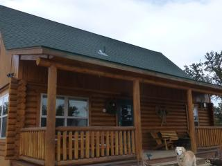 Watts Log Home Cabin - Fairplay vacation rentals