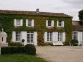 Main house - Historic and very private estate with pool - Poitou-Charentes - rentals
