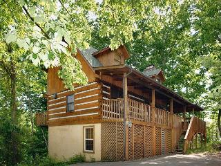 Gatlinburg Cabin in the mountains ABOVE IT ALL II  61 - Sevierville vacation rentals