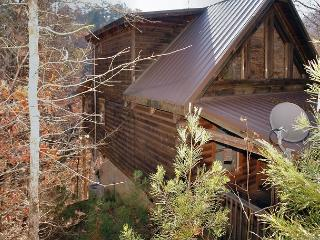 Romantic 1 Bedroom Cabin Close to the Pigeon Forge Parkway and Downtown - Sevierville vacation rentals