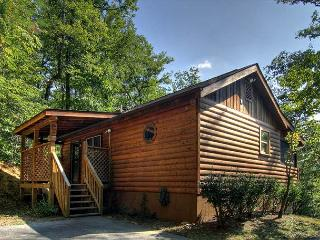 Pigeon Forge Cabin in the Wears Valley area HIDDEN DREAMS 196 - Sevierville vacation rentals