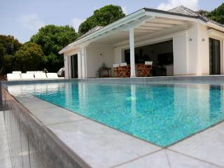 Villa Ted at Deve, St. Barth - Ocean View, Pool, Very Private - Grand Cul-de-Sac vacation rentals