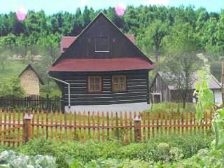 Delightful cottage with wildlife views - Slovakia vacation rentals