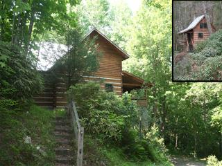 Two Cabins One Low Price*Hot tub*Creek*Firepit*AC - Blue Ridge Mountains vacation rentals