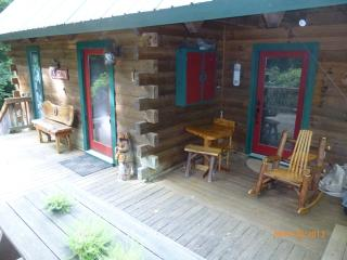 Canoe Cabin * Hot Tub * In Law Suite * - North Georgia Mountains vacation rentals