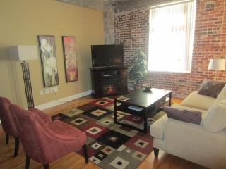 Loft Condo in LoDo, Downtown Denver - Hidden Valley vacation rentals