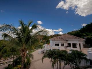 Beautiful Ocean View Villa- Pura Vida Villa - Playa Ocotal vacation rentals