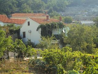 Holiday house Petar in Orasac near Dubrovnik - Orasac vacation rentals