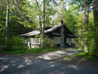 The Woodland Valley Lodge - Sleeps 10 in Luxury - Catskills vacation rentals