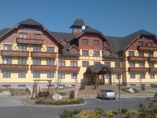Apartment with a beautiful view of the High Tatras - Veľká Lomnica vacation rentals