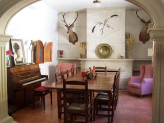 Elegant Villa in the Heart of La Mancha - Castilla La Mancha vacation rentals