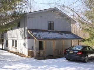 Summer : $199 per night 2 nights min/Holiday wknds 3 nights - Windham vacation rentals
