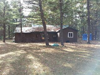 Cabin Fever- Log cabin on 5 wooded acres - Baldwin vacation rentals