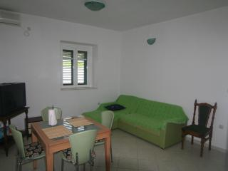 Apartment on island Prvic for 4 - Prvic Sepurine vacation rentals