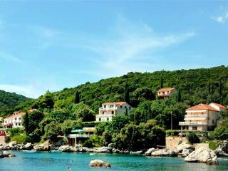 Renovated apartment for 4 persons, with swimming pool , near the beach in Cavtat - Molunat vacation rentals