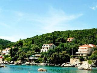 Renovated apartment for 2 persons, with swimming pool , near the beach in Cavtat - Molunat vacation rentals