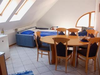 Vacation Apartment in Landau - 431 sqft, quiet, friendly, relaxing (# 3791) - Landau in der Pfalz vacation rentals