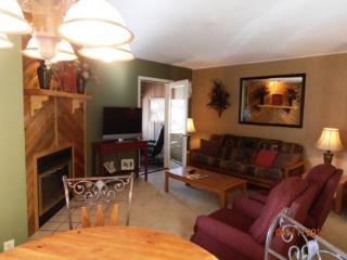 Gold Dust B3 - Angel Fire vacation rentals