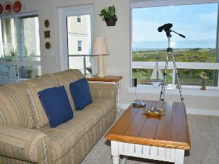 Spacious Two Bedroom Pet Friendly Condo on the Beach - Westport vacation rentals