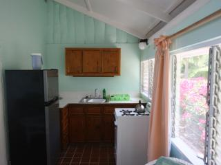 Rainbow Beach Cottage - English Harbour vacation rentals