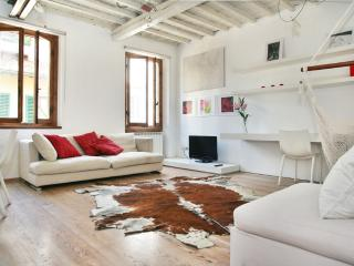 White Suite, Charming appart. in Oltrarno Area - Florence vacation rentals