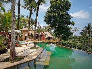 Toya Bali Villa 3-5 bedroom valley view UBUD - Ubud vacation rentals
