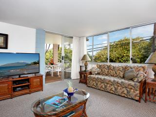 Large 2 Bd/2 Bath condo steps from the beach - Kihei vacation rentals