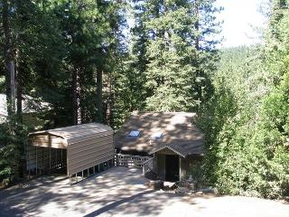 3 BR / 2 BA in the Snow!  Sleeps 6-9.  Neat-as-a-Pin & Pet-Friendly! - Mi-Wuk Village vacation rentals