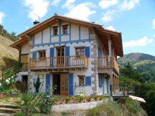 Beautiful House in the Basque Country - Navarra vacation rentals