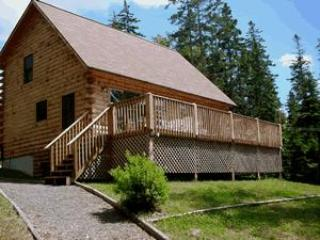 Log Home - Image 1 - Bar Harbor - rentals