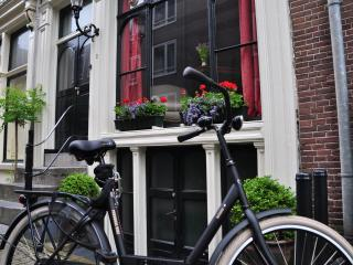 Luxurious classic gable Dutch house canal views - Holland (Netherlands) vacation rentals