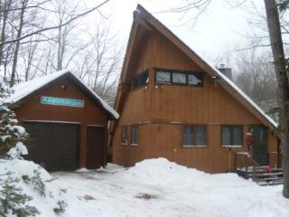 LOWER KASTENBOLE Chalet at Whitecap Ski and Golf - Upson vacation rentals