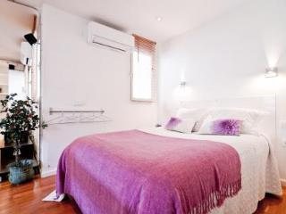 ROYAL PALACE SUITE - Madrid vacation rentals