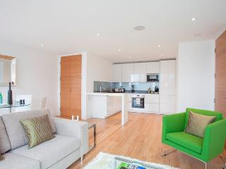 1 Bed State of Art Old Street Apartments - Paris vacation rentals