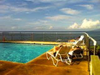 Ocean Side Pool - MAUI LAHAINA PUAMANA $155 SLEEPS 4 2bed/1bath - Lahaina - rentals