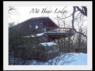 Mt. Bear Lodge - Lake Harmony vacation rentals