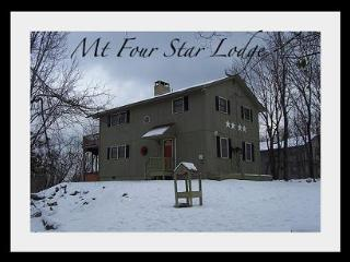 Mt. Four Star Lodge - Lake Harmony vacation rentals