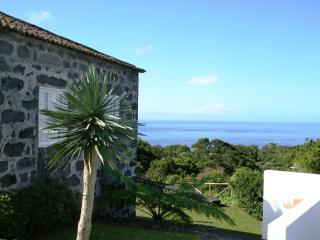Casa da Faia - holiday home over viewing the ocean - Horta vacation rentals