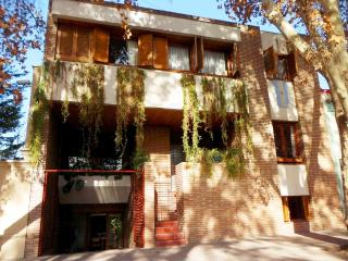 COMFORT AND PRIVILEGED LOCATION - Mendoza vacation rentals
