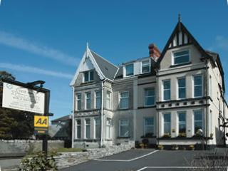 Tree Tops Guest House - Tree Tops Guest House - Briton Ferry - rentals