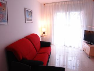 AMAZING TWO BEDROOM APARTMENT WITH TERRACE BCN - Barcelona vacation rentals