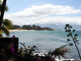 Paia Bay Cottage, ocean front, License STPH2013/0013 - Haiku vacation rentals