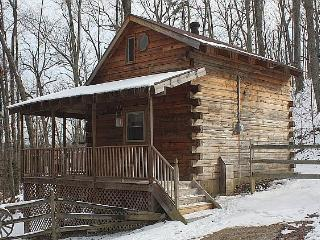 Chestnut Ridge Cabin - Kentucky vacation rentals