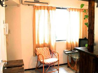 Cozy Apartment (Studio) In Downtown - Province of Mendoza vacation rentals