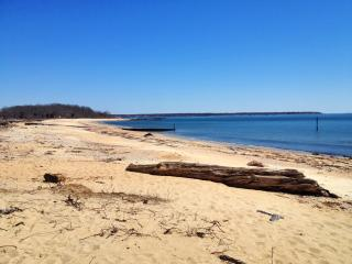 Beachfront Home w/ Private Beach & over 200 Acres - Old Lyme vacation rentals