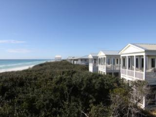 Beachfront 10 - Seagrove Beach vacation rentals